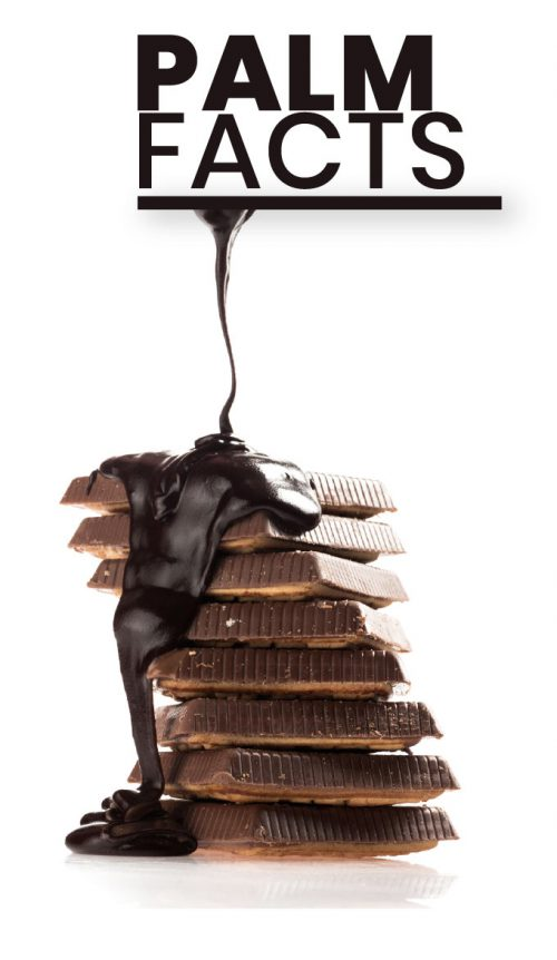 world-chocolate-day-palm-facts2